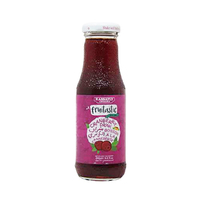 Kassatly Fruitastic Drink Cranberry 250ML