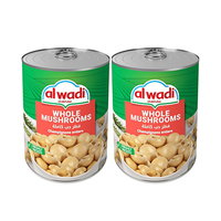 Al Wadi Akhdar Mushrooms Whole 400GR X2
