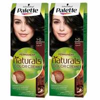 Palette Permanent Natural Colours Cream Pack of 2