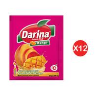 Darina Instant Powder Drink 30GR X12