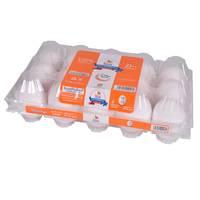 Saha Large White Eggs x Pack of 15