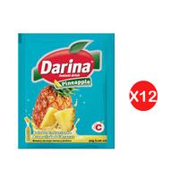 Darina Instant Powder Drink Pineapple 30GR X12
