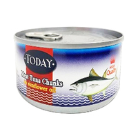 Today White Tuna Chunk 160GR
