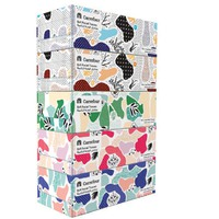 Carrefour Economic Assorted Soft Facial Tissues 150 Sheets x Pack of 5