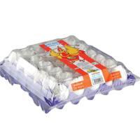 Saha Dubai Medium White Eggs x Pack of 30