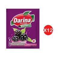 Darina Instant Powder Drink Blackberry 30GR X12